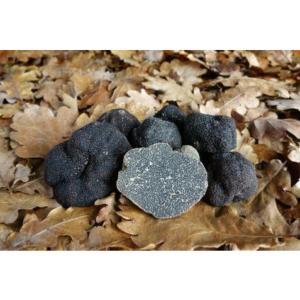 Truffes noires fraiches morceaux tuber m lanosporum - Comment cuisiner les truffes noires ...